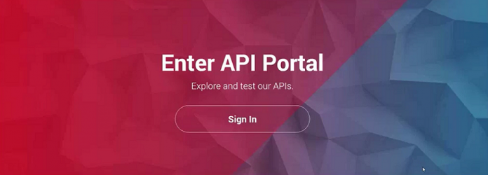 api developer portal