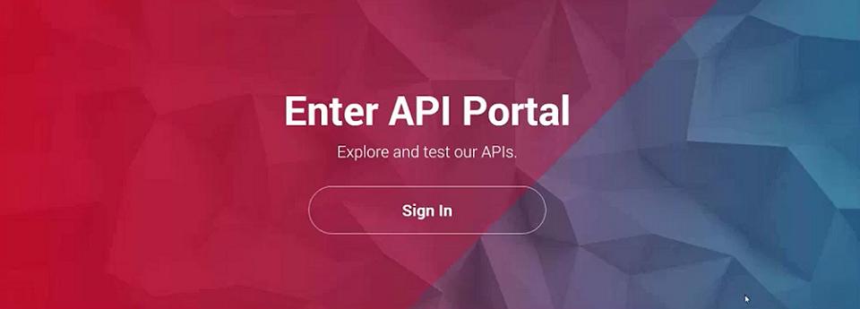 api developer portal