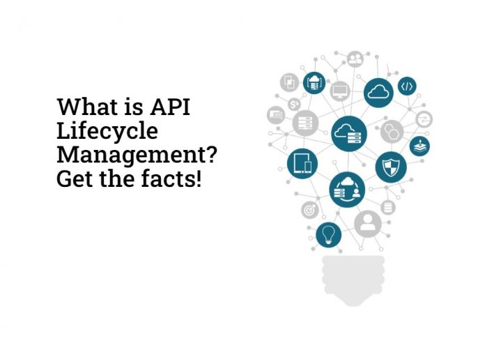 API Lifecycle Management
