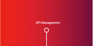 API MANAGEMENT LESSONS