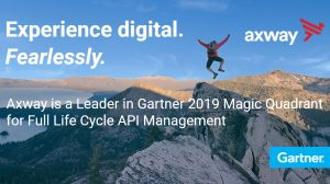 Gartner 2019 Full Life Cycle API Management