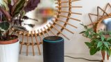 Accessing Syncplicity content with Alexa, Part 1