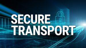 SecureTransport Cluster models
