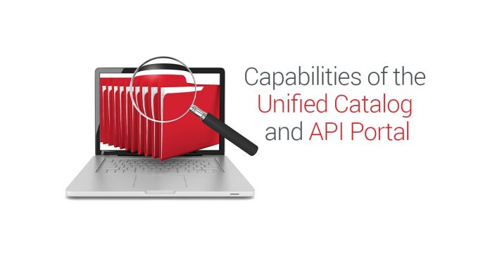 Unifeid Catalog and API Portal
