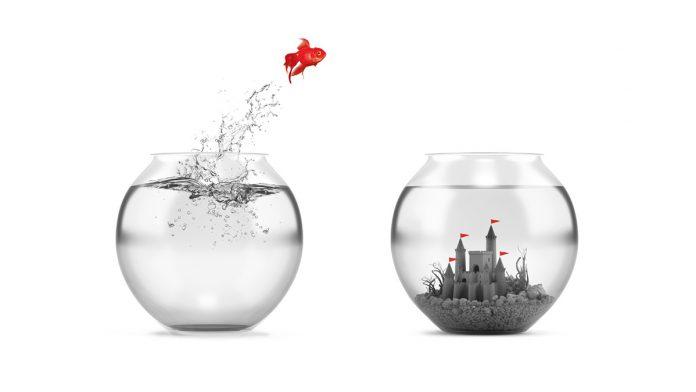 digital transformation is becoming digital business
