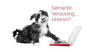 What is Semantic Versioning?