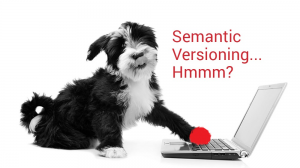 What is Semantic Versioning?