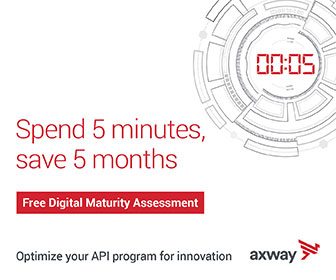 API digital maturity assessment