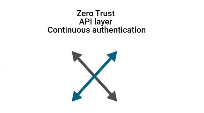 Zero trust API layer